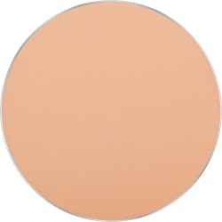 Freedom System Mattifying System 3S Pressed Powder Round 303 icon