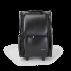 Makeup Case With Wheels (KC-P42L) icon